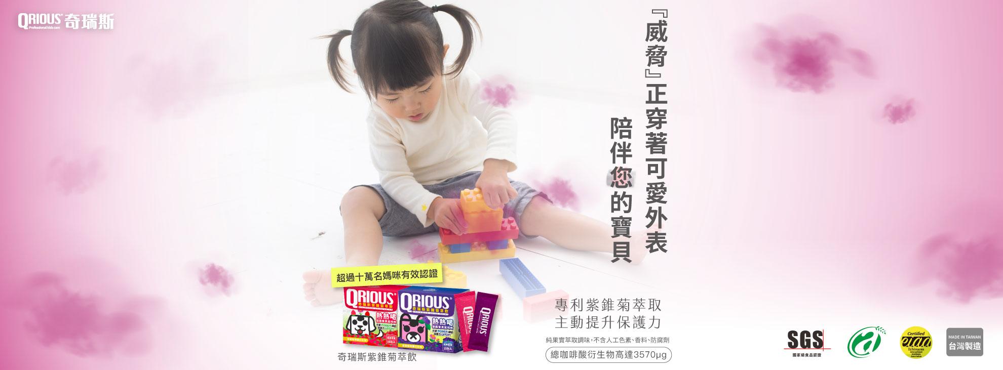 紫錐菊萃飲 紫錐花專家